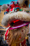 Chinese New Year Celebration. Lion Dance Royalty Free Stock Images