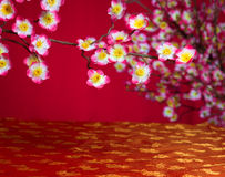 Chinese new year cherry blossom Stock Images