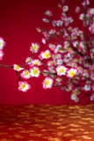 chinese new year cherry blossom Royalty Free Stock Images