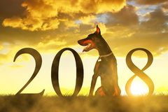 Chinese New Year 2018 concept. Dog sitting on meadow at sunset Royalty Free Stock Photos