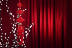 Free Chinese New Year Decoration Stock Photos - 17148273