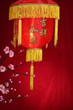 Chinese new year decoration. Traditional paper lantern and plum blossom on a festive background.Character on lantern symbolizes good luck Stock Image