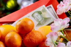 Chinese new year decoration of oranges with Chinese Yuan Currency. And flowers blossom stock images