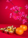 Chinese new year decorations,generci chinese character symbolize Stock Photography