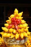 Chinese New Year Decorative Solanum Mammosum Tree Royalty Free Stock Images