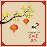 Chinese new year design background. Chinese New Year sale design. Template vector illustration