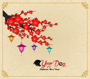 Chinese New Year design. Dog with plum blossom in traditional chinese background. hieroglyph: Dog Stock Image