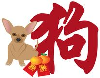 Chinese New Year Dog Chihhuahua Red Packets Vector  Stock Photo