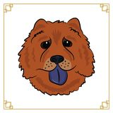 Chinese new year of the dog 2018. The head of a dog Chow-Chow on the white background Vector Illustration