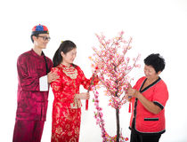 Chinese new year family Stock Image