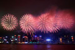 Hong Kong : Chinese New Year Fireworks 2013 Stock Images