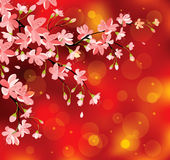 Chinese new year flowers royalty free illustration
