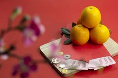 Chinese new year fresh oranges and angpao pocket with wooden board and cherry blossom flower on red paper background. Chinese new year fresh oranges and angpao stock image