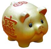 Chinese new year Gold pig. Chinese Gold pig isolated on white Royalty Free Stock Images