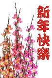 Chinese New Year greeting and plum blossom Stock Photo