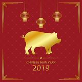 2019 Chinese New Year illustration with gold pig and golden hanging lanterns. Year of the pig - holiday card on red background. Royalty Free Stock Photo