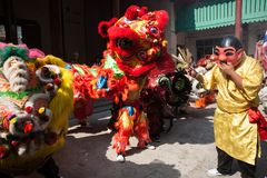 Chinese New Year, the Lion dance Royalty Free Stock Photos