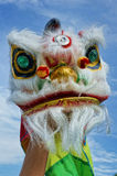 Chinese new year lion dance. Chinese new year  lion dance with blue sky Royalty Free Stock Photography