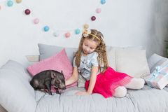 Chinese New Year 2019. Lucky Pig. The year of the pig. Cute blonde girl with baby pig celebrating Chinese New Year. 2019. Chinese New Year 2019. Lucky Pig. The stock photography