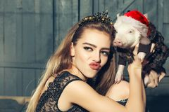 Chinese New Year 2019. Lucky Pig. The year of the pig. Womans with baby pig with christmas hat celebrating Chinese New. Year. 2019 Zodiac. Traditional Chinese royalty free stock image