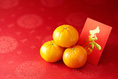 Chinese New Year. Mandarin orange and red packet (Foreign text means spring season Royalty Free Stock Images