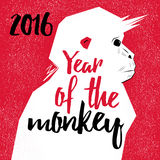 Chinese New Year Monkeys Royalty Free Stock Images