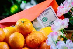 Chinese new year tangerine orange flowers blossom and U.S. dollars. Chinese new year orange tangerine and flowers blossom and U.S. dollars royalty free stock photo