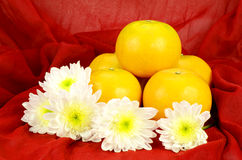 Chinese New Year Oranges. Royalty Free Stock Photo