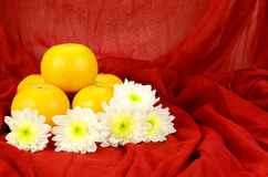 Chinese New Year Oranges. Royalty Free Stock Image