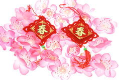 Chinese New Year ornaments and plum blossoms. On white
