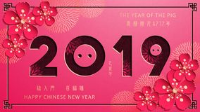 Chinese New Year, The Year of The Pig royalty free stock images