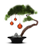 Chinese New Year pine tree. The Chinese new year. A decorative pine with red spheres. Bonsai Stock Photos