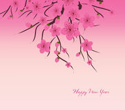 Chinese New Year plum blossom Background Stock Image