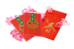 Chinese New Year red packets with plum blossom. Chinese New Year red packets and plum blossom on white background Royalty Free Stock Images