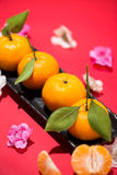 Chinese new year`s decoration. Mandarin orange on red background Stock Image