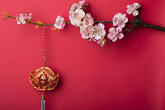 Chinese new year's decoration. Royalty Free Stock Photos