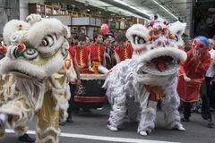 Chinese New Year. SAO PAULO, BRAZIL, JANUARY 26, 2008, Performers, lion dance, take part in the celebration of Chinese New Year in Liberdade district, in Sao