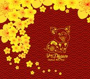 Chinese new year template background. Year of the pig.  vector illustration