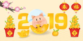 2019 Chinese New Year, Year of Pig Vector with cute piggy with gold ingots, tangerine, lantern couplet and blossom tree. Transl royalty free illustration