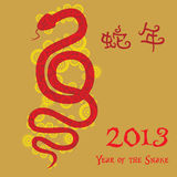 Chinese New Year - Year of the Snake. The Chinese Zodiac - Year of the Snake 2013 with Chinese word - Snake year Stock Image