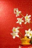 Chinese nieuwe jaardecoratie Royalty-vrije Stock Foto's