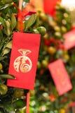 Chinese Nieuwjaardecoratie met lantaarns en enveloppen royalty-vrije stock foto's