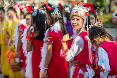 Chinese Nieuwjaarviering Stock Afbeelding