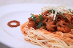 Chinese noedel met pijlinktvis Stock Foto's