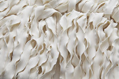 Chinese noodle. Uncooked chinese noodle close up Royalty Free Stock Image
