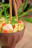 Chinese noodle dish Royalty Free Stock Images