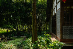 Chinese old building in bamboo of sunny autumn Royalty Free Stock Photos