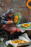 Chinese old woman wreathed flowers into a garland. Chinese old woman makes garland, in Huanglong Xi Ancient Town Scenic Zone,Sichuan,China stock photography