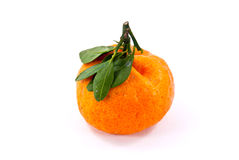 Chinese Orange Royalty Free Stock Photography