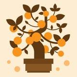 Chinese Oranje bonsaiboom Stock Fotografie